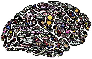 Our brains are a memory of the past
