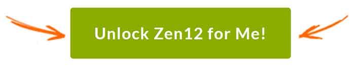 Purchase Zen 12 button